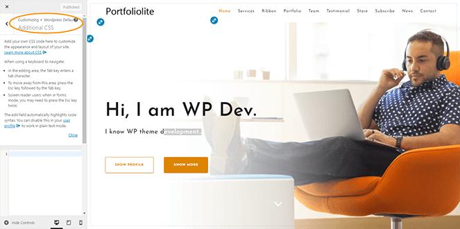 additional-CSS-portfoliolite