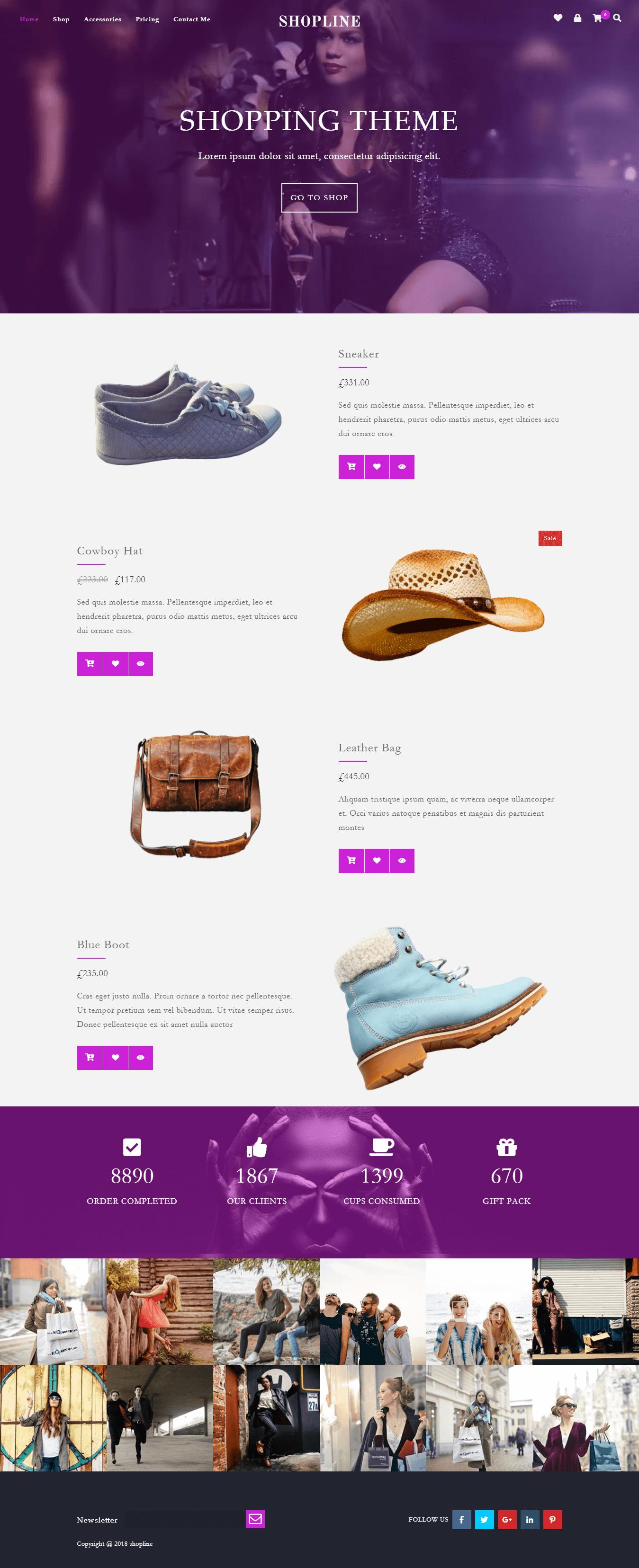Shopline Pro Demo 5