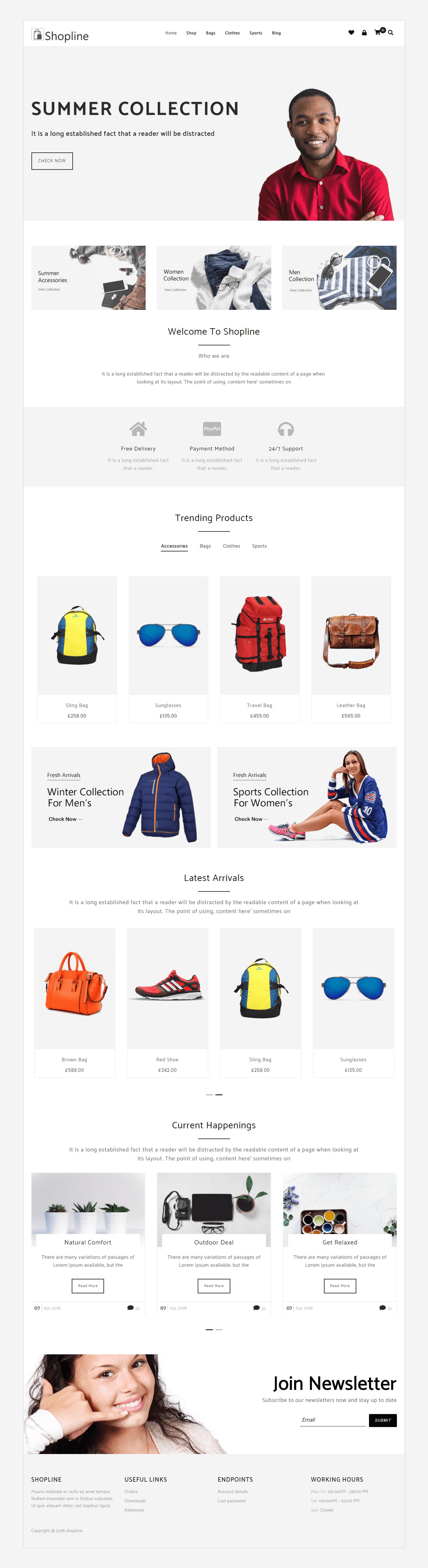 Shopline Pro Boxed Layout