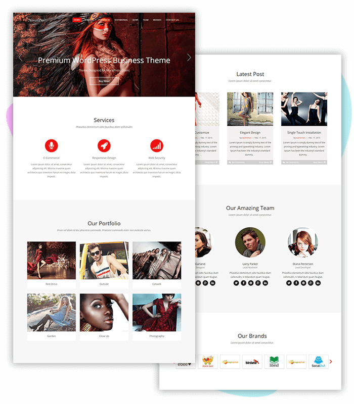 Onepage-business-one-click-demo-import