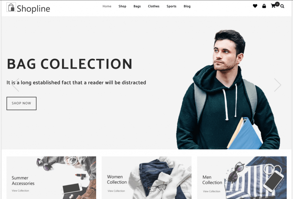 How to create Online Jewellery Shop with WordPress
