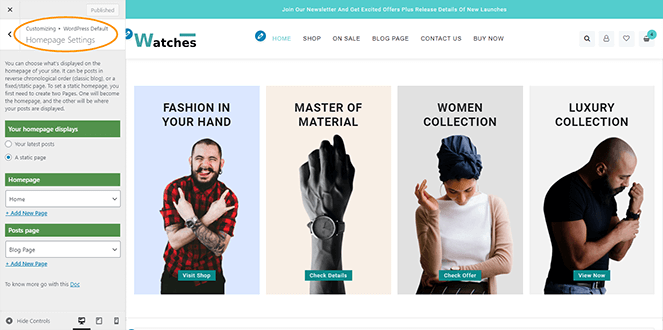 homepage-setting-big-store-pro