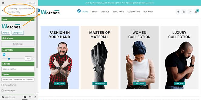 site-identity-big-store-pro